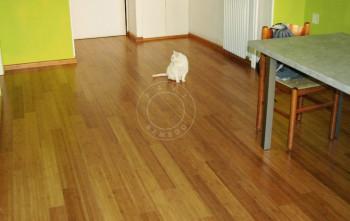 bamboo flooring renovation